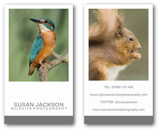 Two image photographers business card template